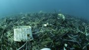 05 Jun 2003 --- Plastic rubbish on the seabed. Pollution such as this can severely damage marine environments. Plastics in particular take a very long time to break down. Photographed in the Mediterranean Sea. --- Image by © Alexis Rosenfeld/Science Photo Library/Corbis